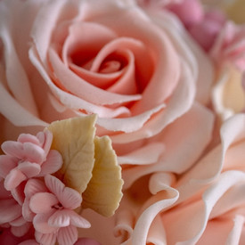 Peach roses.jpg