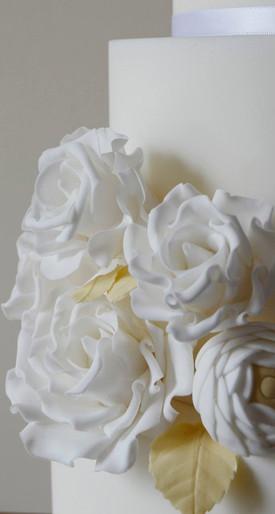 White rose close up.jpg