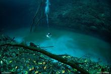 Angelita - Cenote  安吉麗塔 (天使之井)