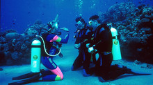 怎麼選擇潛水?