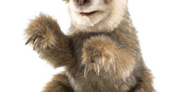 Sloth Baby puppet