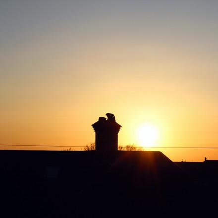 Sunset, Photograph 16.
