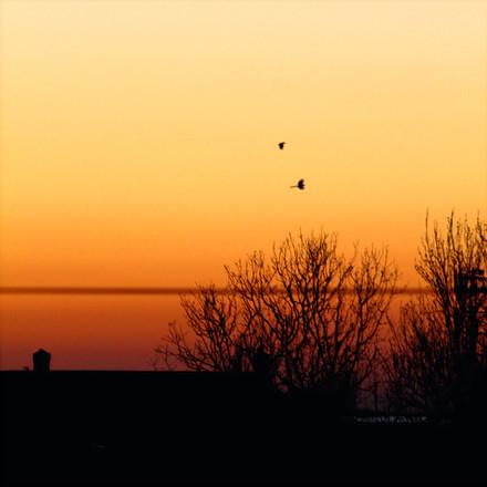 Sunset, Photograph 20.