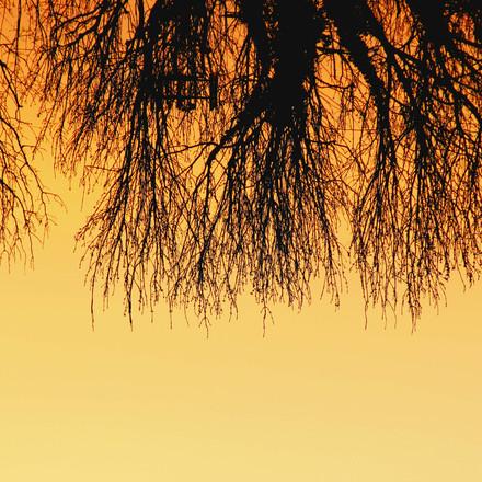 Sunset, Photograph 5.
