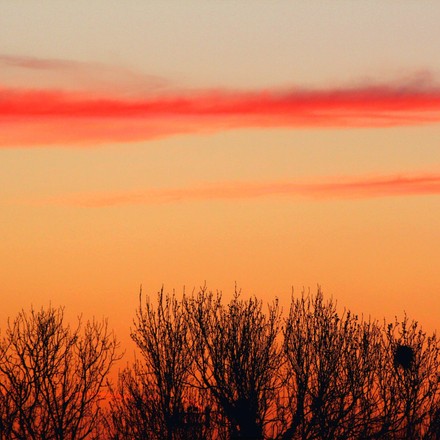 Sunset, Photograph 11.