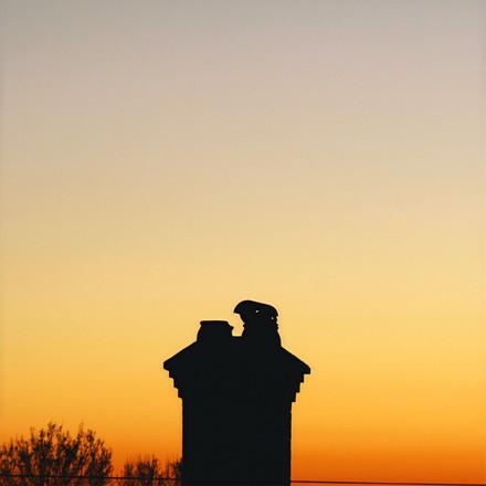 Sunset, Photograph 19.