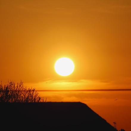 Sunset, Photograph 14.
