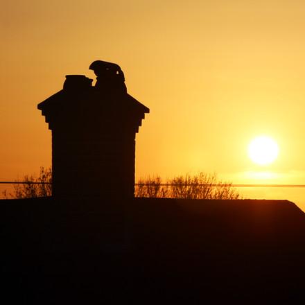 Sunset, Photograph 10.