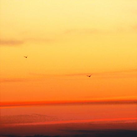 Sunset, Photograph 17.