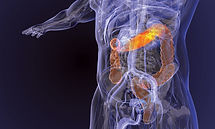 ITK.Gastroenterology.S21-1170x700.jpg