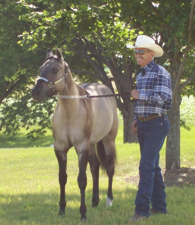 Beezer with Ben as a Yearling