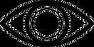 toppng.com-eye-minimalist-980x492.png