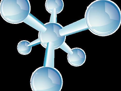 胜肽-Peptide