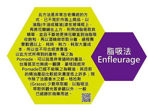 萃取技術種類-脂吸法(Extraction technology-Enfleurage)