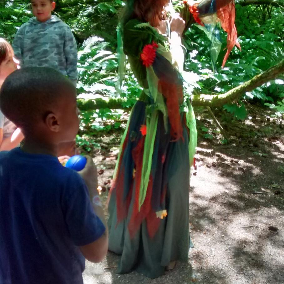 open house 2018 miriam forest fairy tour