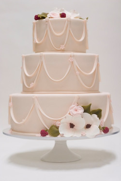 studio cake photography
