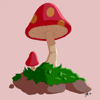 Funtime Shrooms
