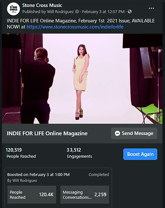 The-Online-Magazine,-Indie-For-Life-Stat
