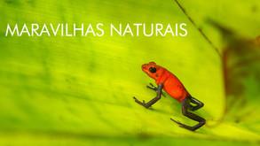 Maravilhas Naturais - 9 Episódios
