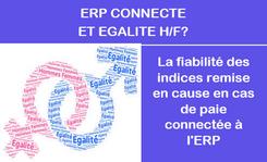 Calcul index Egalité H/F  pour les ERP connectés  à un logiciel de Paie externe