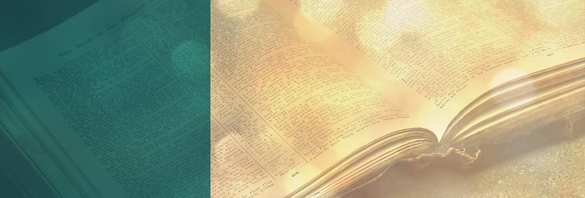 Bible Study Website Banner Design.png