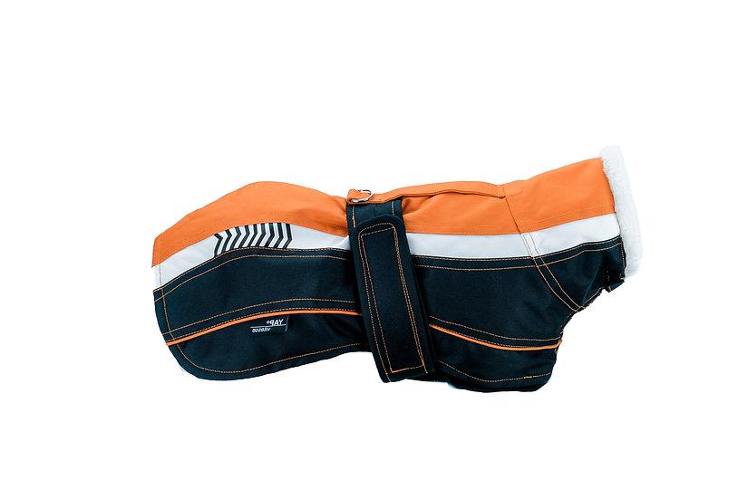 Vitesse- Orange