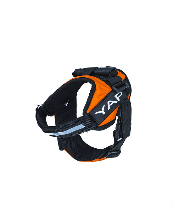 Beta Noir Harness- Orange