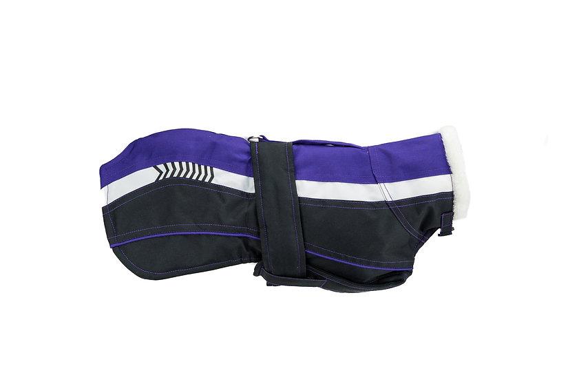 Vitesse- Purple