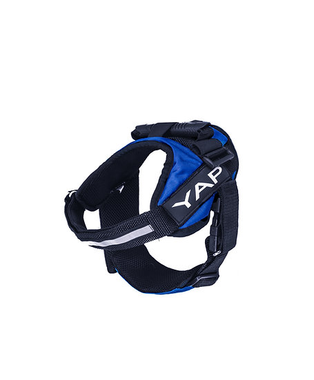 Beta Noir Harness- Blue