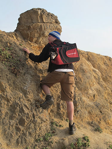 YAP Sport Backpack climber with dog