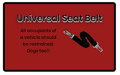 Universal Seat Belt for dogs