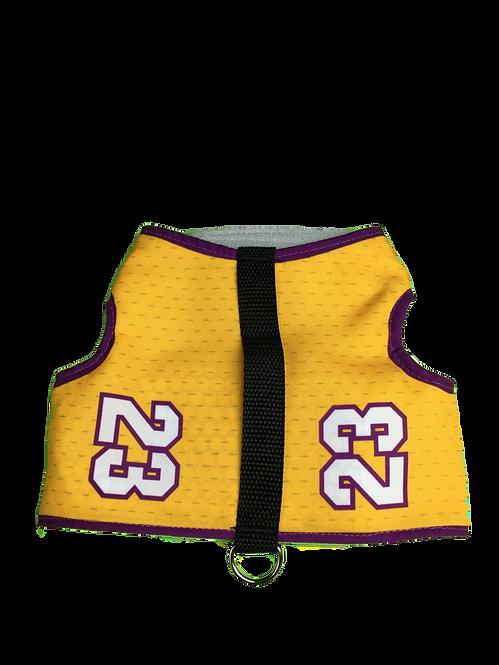 Sports Techno Wrap- LA Basketball #23