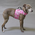 Pink Hawaiian YAP Wrap Engineered Harness for Dogs by YAP USA