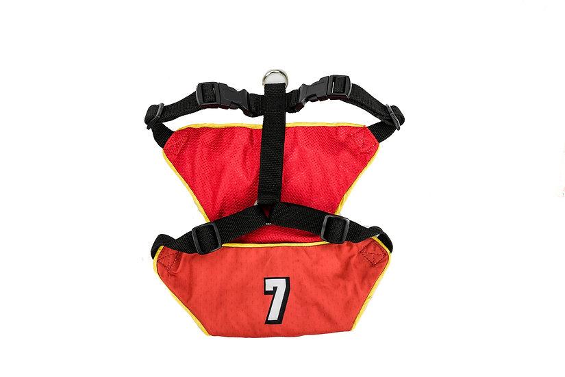 Sports Harness- #7
