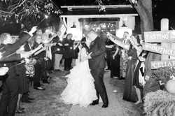 barns-hamilton-station-vineyard-wanka-wedding-reception-bethanne-arthur-photography-photos-277