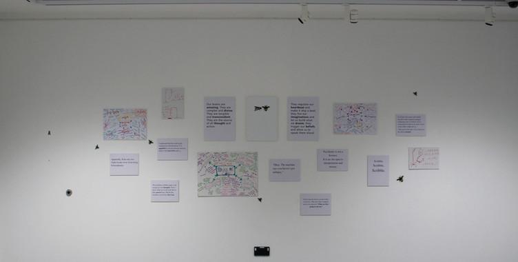 word wall.jpg