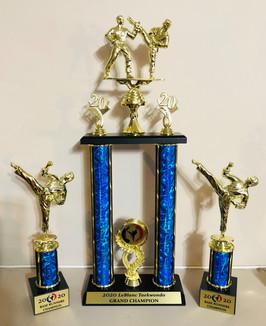 Leblanc Tae Kwon Do Championship