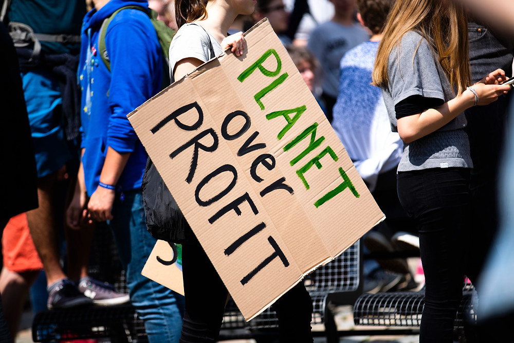 protests and climate strike european elections
