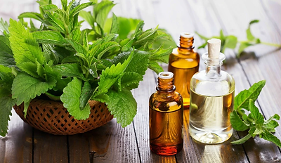 peppermint-oil-feature-grooming_1024x102