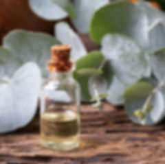 bottle-of-eucalyptus-essential-oil-with-