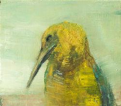 Desert Bird