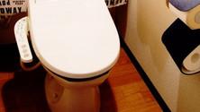トイレの雰囲気を変える床リフォーム