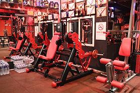 Örnek Fitness Firması