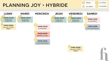 PLANNING JOY HYBRIDE.png