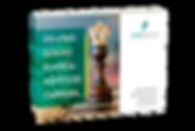simulação-ebook-4-passos-do-planejamento