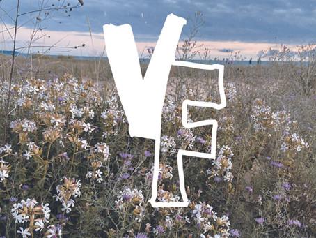 Welcome to Velvet Fields