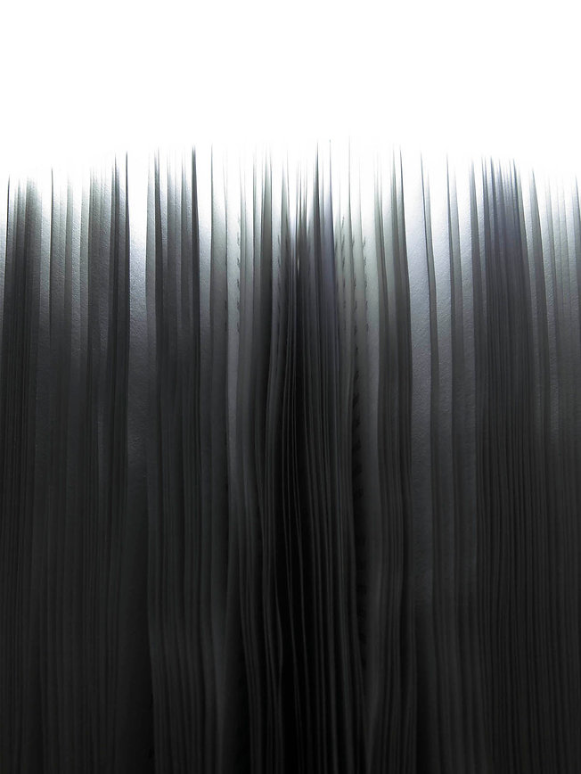 Book Grass(Resize).jpg