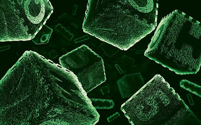 Bacteria_rectangular 5.jpg