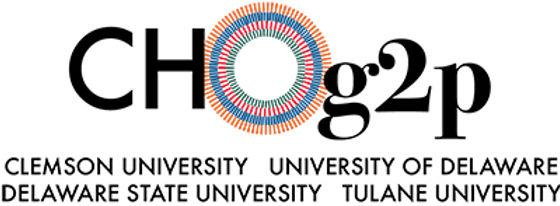 CHOg2p color logo