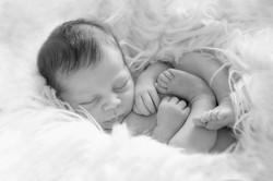 Neugeborene Vorarlberg